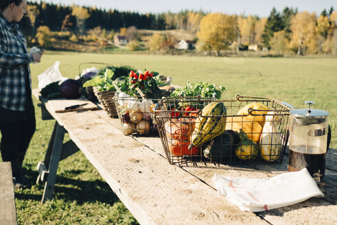 Variety of organic vegetables in baskets on table for sale at farmer's market - MASF00600
