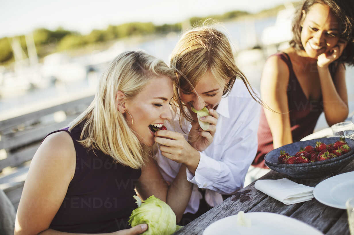 Young woman looking at cheerful blond friends sharing cabbage at picnic table - MASF00678 - Maskot ./Westend61