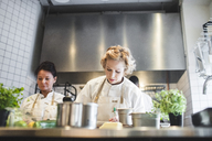 Low angle view of female chefs working at kitchen counter in restaurant - MASF00888
