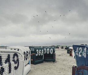 Germany, East Frisia, Neuharlingersiel, Hooded beach chairs at the beach - DWIF00906