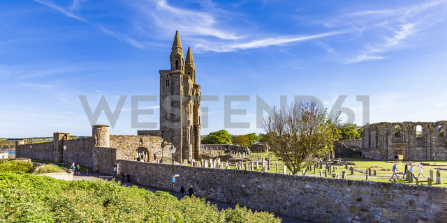Scotland, Fife, St. Andrews Cathedral ruins - WD04574 - Werner Dieterich/Westend61