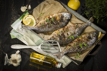 Grilled sea breams - MAEF12554