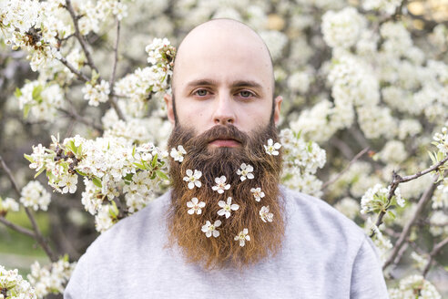 Portrait of hipster with white tree blossoms in his beard - AFVF00417