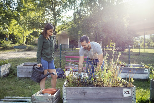 Woman holding watering can while man planting in urban garden - MASF01962