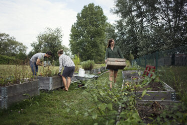 People working in community garden - MASF02214