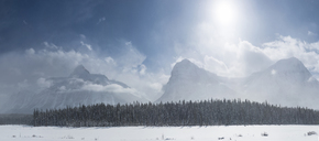 Scenic view of trees against snowcapped mountains at Icefields Parkway - CAVF35748