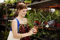 Smiling woman holding houseplant for sale at flower shop - CAVF36225