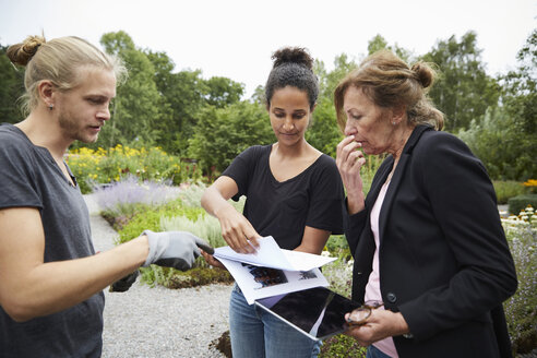 Garden architects with blueprints and digital tablet discussing in garden - MASF02433