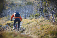 Rear view of mountain biker riding amidst grassy field - MASF02917