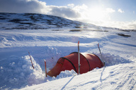 Orange tent on snow in an open field - MASF02966