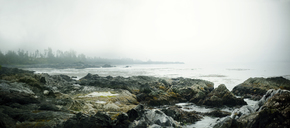 Panoramic view rocky shore by sea against sky during foggy weather - CAVF36289