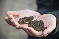 Germnay, Hands holding soil with worms - PAF01808