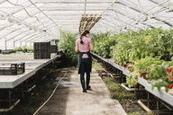 Rear view of female gardener walking at walkway in greenhouse - MASF03386