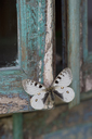 Painted blue wood, white butterfly - CRF02780