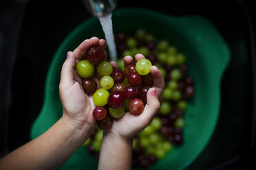 Cropped image of girl washing grapes in sink - CAVF38334