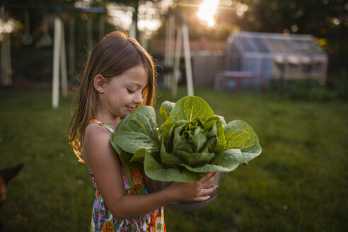 Girl looking at lettuce while carrying in bowl at backyard - CAVF38343