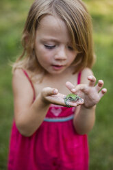 Cute girl playing with frog in yard - CAVF38382