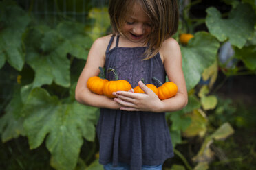 Happy girl holding pumpkins while standing against plants - CAVF38400