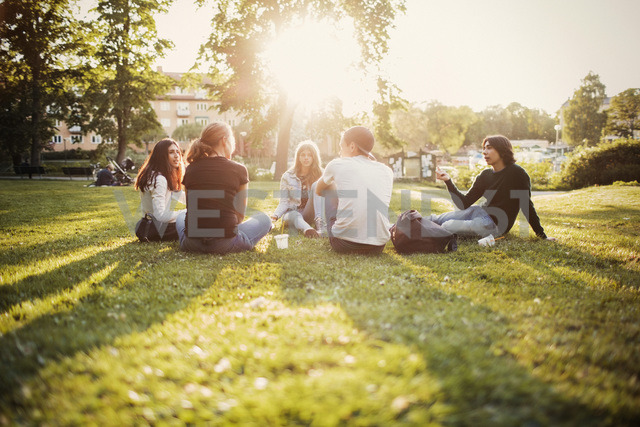 Teenagers spending leisure time at park - MASF03786