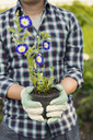 Midsection of man holding flower pot at community garden - MASF04212