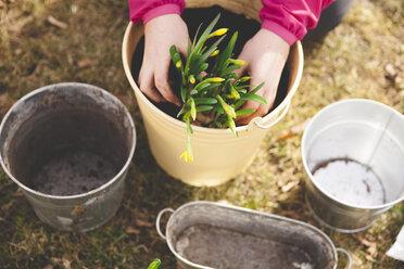 Cropped image of girl planting pot at yard - MASF04346