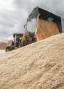 Earth mover unloading wood shavings at sawmill - MASF04367