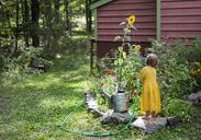 Rear view of girl watering plants in backyard - CAVF39405