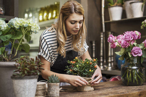 Florist arranging flowers at table in shop - CAVF39853