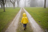 Rear view of boy in raincoat walking on dirt road during foggy weather - CAVF40060