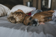 Boy sleeping with Schnauzer on bed at home - CAVF40123