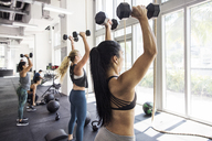 Athletes exercising with dumbbells in crossfit gym on sunny day - CAVF40252