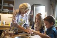 Children with grandmother preparing food in kitchen - CAVF40471