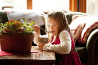 Portrait of cute girl sipping spoon at table in living room - CAVF40729