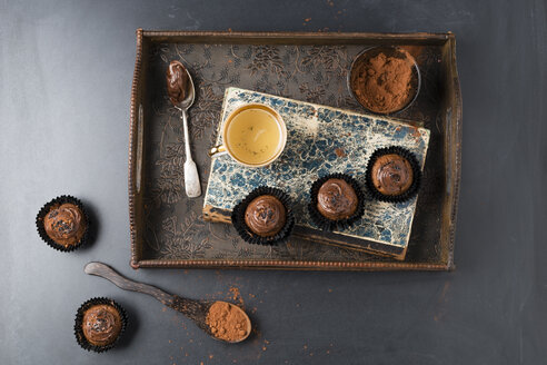 Small cupcakes with chocolate cream and cocoa powder - MYF02027