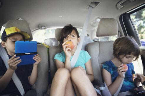 Siblings traveling in car - CAVF41719