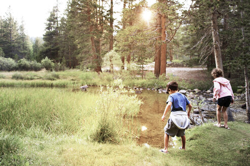 Rear view of siblings standing on grassy field by stream - CAVF42006