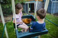 High angle view of siblings with chicken sitting on swing at backyard - CAVF42356