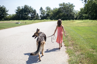 Rear view of girl walking with German Shepherd on road during sunny day amidst grassy field - CAVF42410