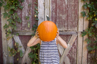 Playful girl holding pumpkin against face while standing against wooden wall at yard - CAVF42455