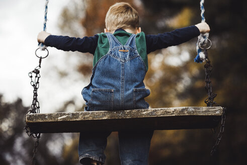 Rear view of boy sitting on swing - CAVF42530