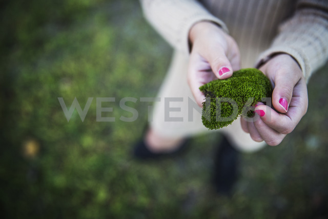 High angle view of hands holding moss - CAVF42959