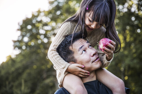 Girl sitting on father's shoulder in orchard - CAVF42992