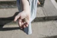 Snail shell on little girl's palm - KMKF00174
