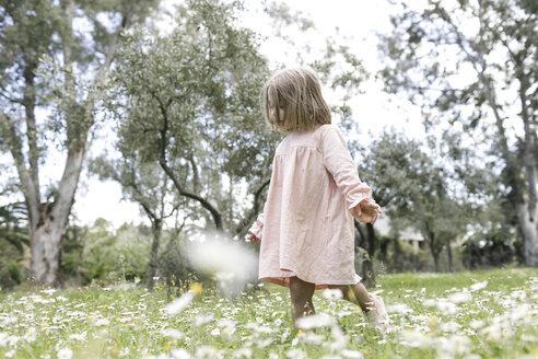 Little girl walking on flower meadow - KMKF00198