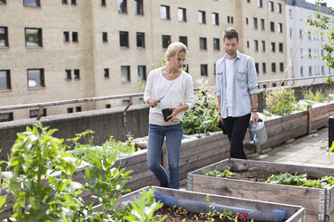 Young Caucasian couple examining potted plants at urban garden - MASF05921