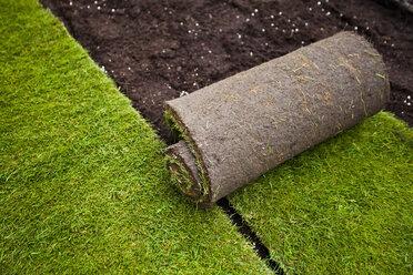Rolled grass turf in formal garden - MASF05942