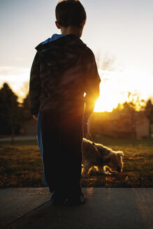 Rear view of boy with Yorkshire Terrier in park during sunset - CAVF43478