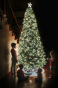 Siblings by Christmas tree at home - CAVF43493