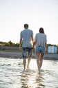 Rear view of young couple holding hands walking in water at beach - MASF06001
