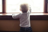 Rear view of baby boy looking through window at home - CAVF44651